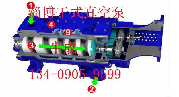 螺杆真空泵结构图1