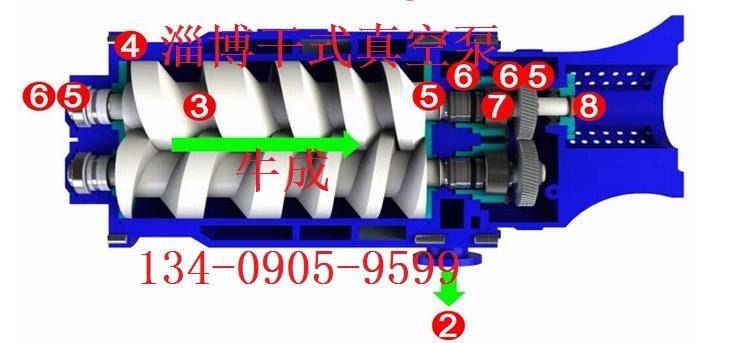 螺杆真空泵结构图2